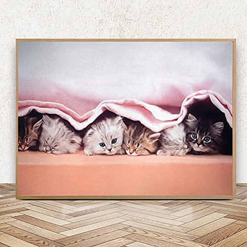 Puzzle 1000 piezas Lindo animal dulce gato arte minimalista peekaboo puzzle 1000 piezas clementoni Rompecabezas educativo de juguete para aliviar el estrés intelectual50x75cm(20x30inch)