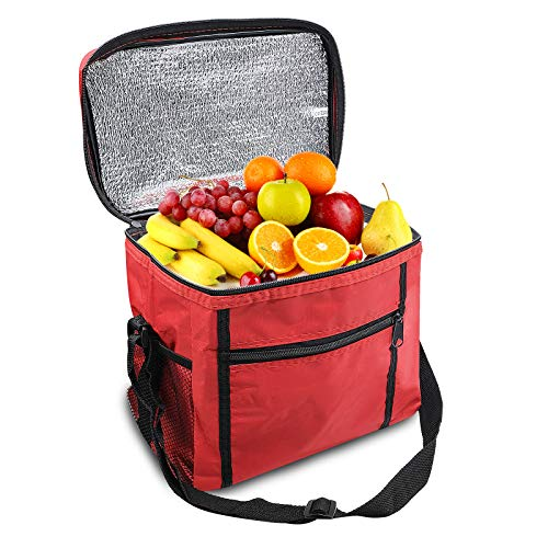 Insulated Collapsible Cooler Lunch Bag, Hot and Cold Food Transport Soft...