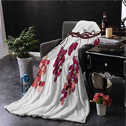 hengshu Fruit Faux Fleece Throw Blanket Vine Branch with Colorful Grapes Agriculture Themed Illustration Healthy Food Options Soft Fuzzy Blanket for Couch Bed W70 x L70 Inch Multicolor