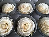 Decoflorales® - Echte, auf Glycerinbasis konservierte Rosenköpfe; Farbe champagner; 6 Stück