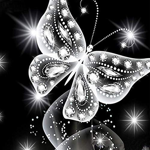 SHUIBIAN DIY 5D Diamant Painting Set, Diamond Painting kristall Strass Diamant Stickerei gemälde für wohnkultur,Schmetterling Style 01 (30x30cm)