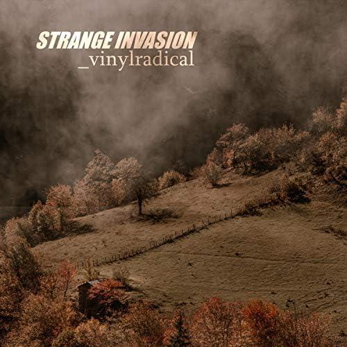 Vinyl Radical