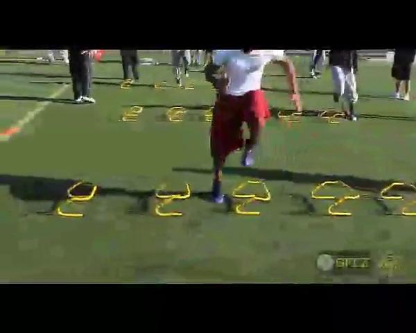 Champion Sports Adjustable 11 Different Sizes Training Hurdle PH Training Hurdle