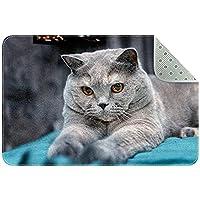 かわいい猫 01 キッチン、ベッドルーム、リビングルーム用の洗えるフロアマットラグ長方形の保育園用ラグ