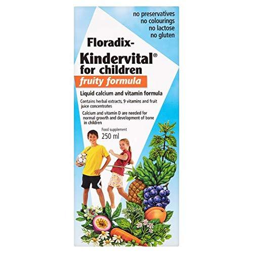 Salus Floradix Kindervital Formule fruitée pour enfant 250 ml