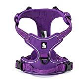 TRUE LOVE Adjustable No-Pull Dog Harness Reflective Pup Vest Harnesses Comfortable Control Brilliant Colors Truelove TLH5651(Purple,L)