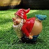 CNZXCO Gartenzwerg, 2St Gartenzwerg Lustig, 20cm Arsch Birdie Fickt Zwerg, Gartenzwerge Wetterfest, Erdmännchen Gartenfigur, Gartenfiguren FüR AußEn