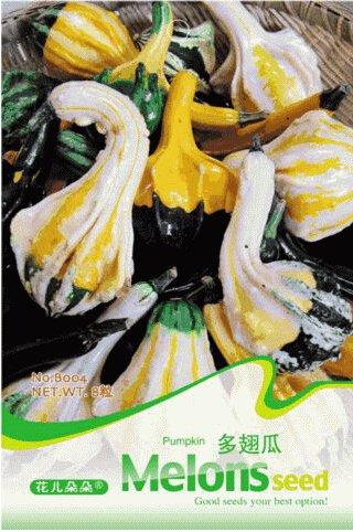pinkdoseâ ® 2018 vente chaude 1 emballage d'origine, environ 8 graines/boîte, bicolore citrouille décorative avec cinq Couples bords graine cucurbita # B004