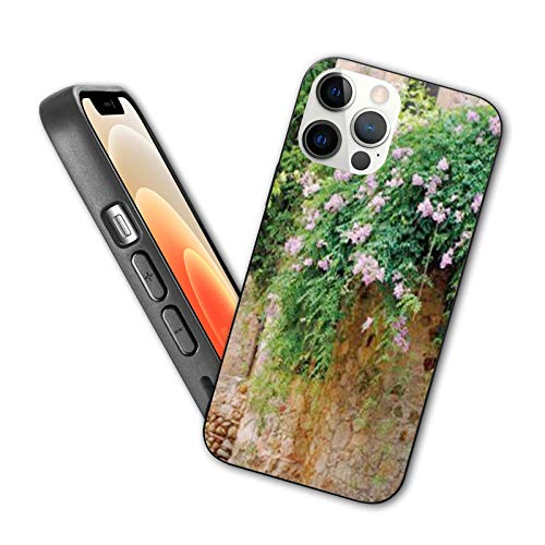 Compatible with iphone 12 Pro Max case Summer garden in the medieval town of Peratallada, Spain Protective Shockproof Cover with Soft TPU Bumper and Hard PC Back(6.7 inch)