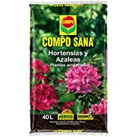 Compo Substratos y turbas Sana hortensias y Azaleas, 40 l