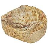 Festnight Lavabo Piedra Fregadero Piedra Fósil para Baño y Jardin Piedras Decorativas Color Crema 45x35x15 cm