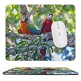 Parrots_Ara_(genus)_Birds_Two_Branches滑り止めのゴム製ベースマウスパッド、厚みのある継ぎ目、ラップトップオフィスに適しています9.8X11.8インチ