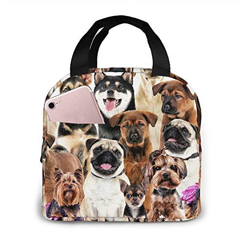 Fiambrera de la foto del animal aislada reutilizable de la tela de la lona del bolso del almuerzo Fiambrera de la foto del animal para el trabajo, el viaje escolar y la comida campestre