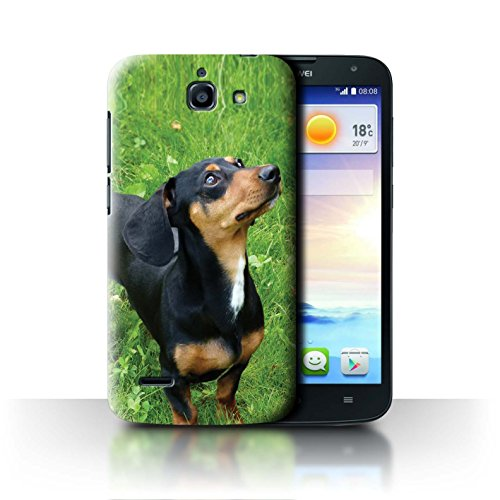 Hülle Für Huawei Ascend G730 H&/Eckzahn Rassen Dackel/Dachsh& Design Transparent Ultra Dünn Klar Hart Schutz Handyhülle Case