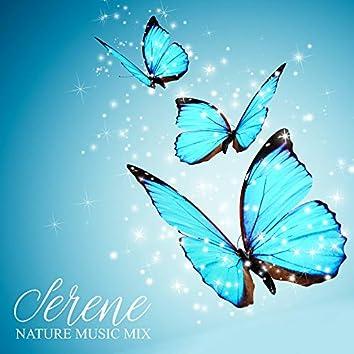 Serene Nature Music Mix