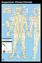 NYC Subway Style Acupuncture Wall Map