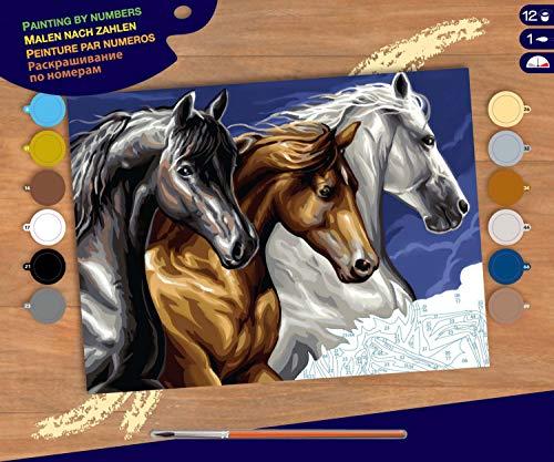 MAMMUT 8241040 – måla efter nummer senior, häst, komplett set med tryckt målarmall i A3-format, 12 akrylfärger, pensel och instruktioner, stor måluppsättning från 10 år