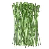 TOYANDONA Lot de 50 tiges de plantes vertes pour la fabrication de fleurs artificielles.