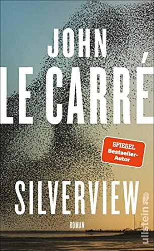 Silverview: Roman