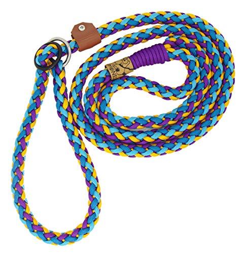 Hundeleine Simba aus Paracord, Retrieverleine, Führleine, 2-4 Farben individuell kombinierbar, Handgeflochten, Halsumfang verstellbar, 1.5 Zentimeter breit