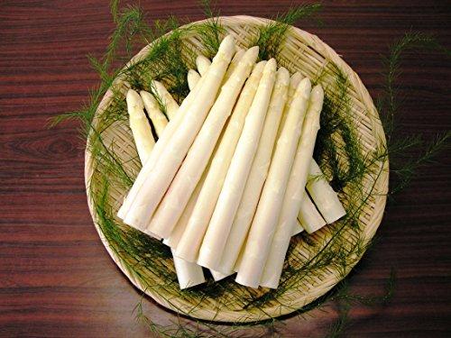 【SSKセールス】【朝採り新鮮】会津産 生鮮ホワイトアスパラガス Lサイズ 1kg