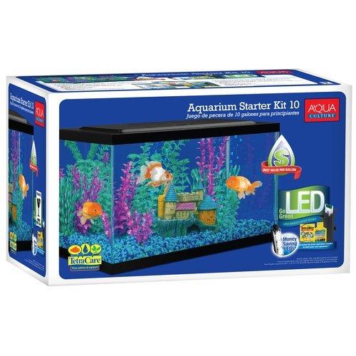Best Aquarium Setup for Beginners