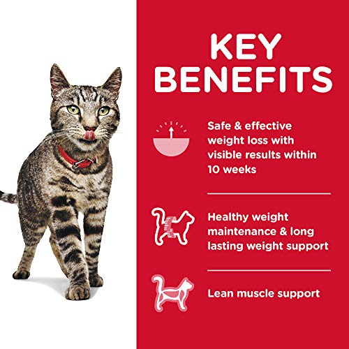 Cat | Hill's Science Diet Dry Cat Food, Adult, Perfect Weight for Healthy Weight & Weight Management, Chicken Recipe, 15 lb Bag, Gym exercise ab workouts - shap2.com