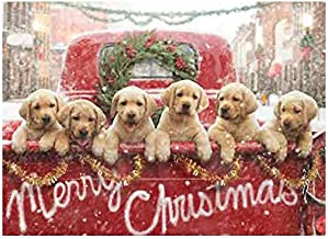 Avanti Press Christmas Cards, All The Love Your Heart Can Hold, 10 Count (701240)