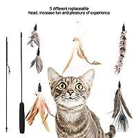 猫の曲がるおもちゃ、耐久性のある猫の曲がる棒、ペット用の猫の運動器具