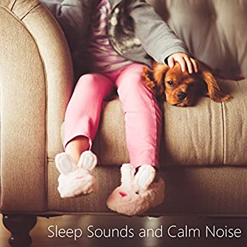 Sounds for Sleep Baby. White Noise Shusher. Looped No Fade Noise.