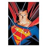 SD Toys DC Comics Jigsaw Puzzle Superman Puzzles