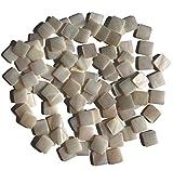 Rhinestone Paradise, pietre di madreperla per mosaico, decorazione, conchiglia, 100 pezzi