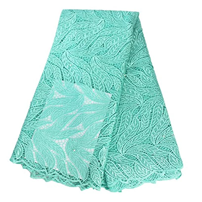 Aisunne 5 Yards African Lace Fabrics Classics Nigerian French Lace Fabric with Embroidered for Wedding Party Dresses (Aqua Green)