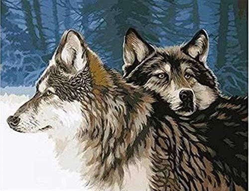Diy Twee wolven Olieverfschilderij op nummer Acrylverf Decor Canvas schilderij Kleurplaat op nummer Tekening Dier 40X50Cm Frameloos