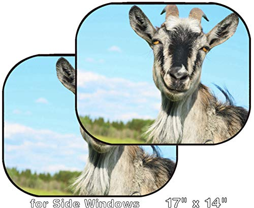 MSD Car Sun Shade - Side Window Sunshade Universal Fit 2 Pack - Block Sun Glare, UV and Heat for Baby and Pet - Smiling Goat Over Blue Sky Image ID 7297228