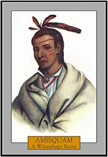 Amisquam - Portrait of a Winnebago Brave (12x18 Framed Gallery Wrapped Stretched Canvas)
