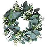 Kapmore Artificial Eucalyptus Wreath 12.99'' Eucalyptus Leaves Wreath for Spring/Summer Greenery Wreath for Front Door Wall Window Decor