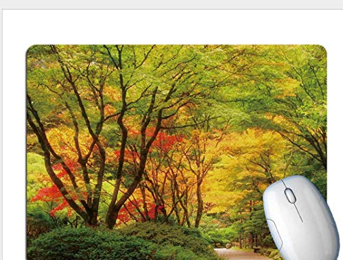 Gaming Mouse Pad, Exquisite Forest Trail, Wear-Resistant And Durable Rubber, Office Gaming Laptop Gaming Mouse Pad