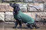 Dog & Field™ Duel Layer Towelling Dog Coat (Olive Green) - Microfiber Lined Fleece Pet Drying Jacket XS - XL Sizes (S)