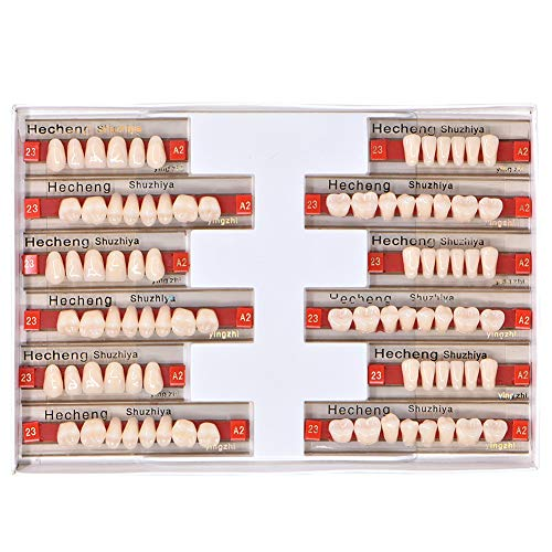 Angzhili 84 Pcs Dental Complete Acrylic Resin Denture False Teeth 3 Sets Synthetic Polymer Resin Denture Teeth 23 Shade A2 Upper + Lower Dental Materials