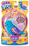 Little Live Pets 28397 Wishy Star - Juguete para pájaros