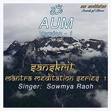 AUM 1 (Sanskrit Mantra Meditation Series 1)
