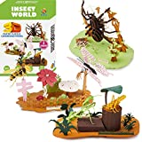 CUPUZ Paper 3D Puzzle, 3 Assorted, Cardboard Models, DIY Kit for Child, Education Craft, 5 Insects-Bee, Butterfly, Mantis, Grasshopper, Spider Puzzles