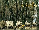 Miorita: An Icon of Romanian Culture (English Edition)