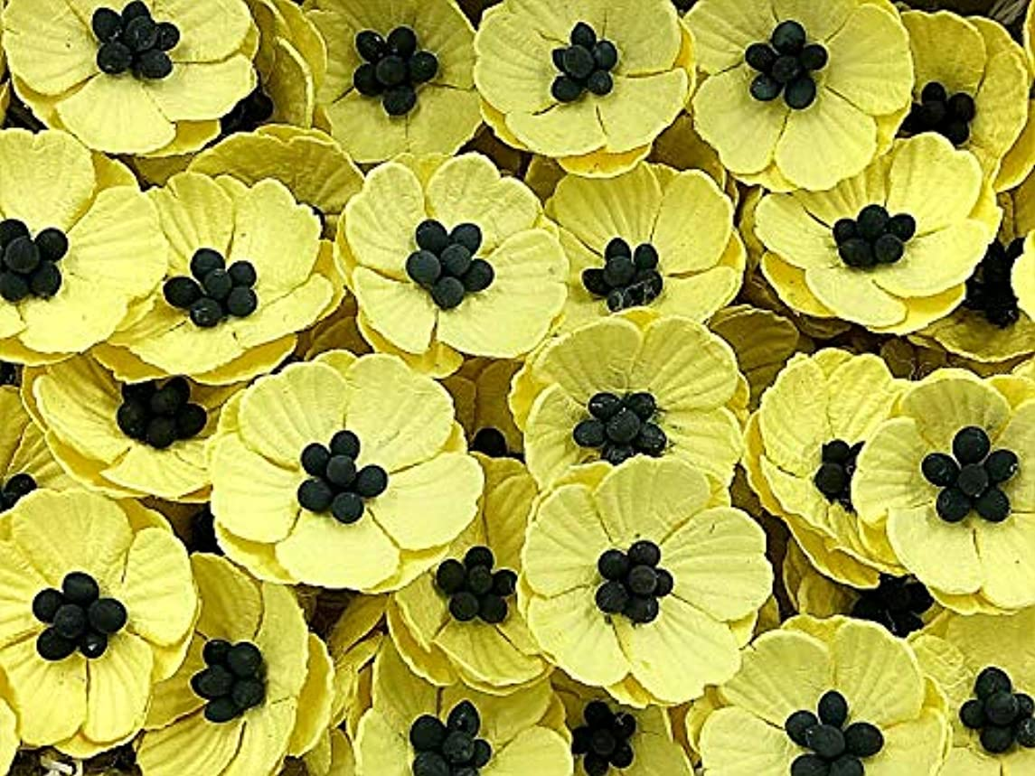 NAVA CHIANGMAI Poppy Mulberry Paper Flower (No Wire stem) Craft Mulberry Paper Flowers, Decorative Flowers for Crafts. (Yellow)