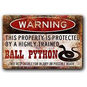 Best ball python art Reviews