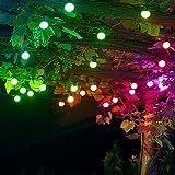 Twinkly Catena di Lampadine di 10 metri con 20 LED Colorati...