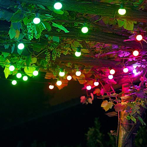 Twinkly Catena di Lampadine di 10 metri con 20 LED Colorati per Uso in Esterni