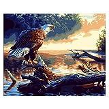 Pintura por números para Adultos Principiante -Paint por números para niños Edades 8-12 -Paint por números Personalizado - Enternanza Creativa Relajarse Lienzo Painting- Riverside Eagle