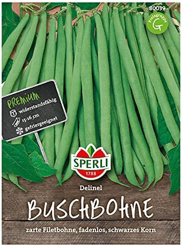 80039 Sperli Premium Buschbohnen Samen Delinel | Ertragreich | Fadenlos | Buschbohnen Samen ohne Fäden | Ackerbohnen Saatgut